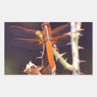 Dragonfly Rectangular Sticker