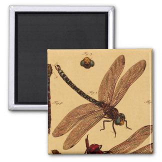 Dragonfly Refrigerator Magnet