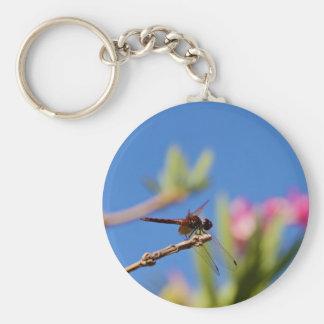 Dragonfly Resting Keychain