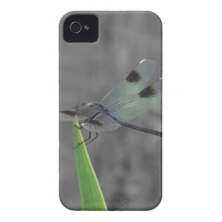 Dragonfly Resting on a Blade of Grass iPhone 4 Case