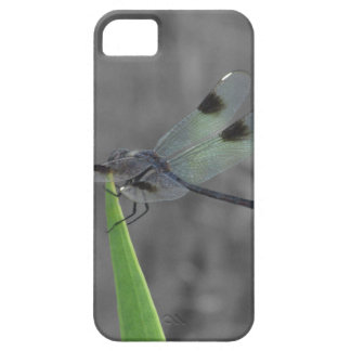 Dragonfly Resting on a Blade of Grass iPhone SE/5/5s Case
