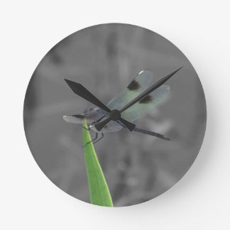 Dragonfly Resting on a Blade of Grass Round Clock