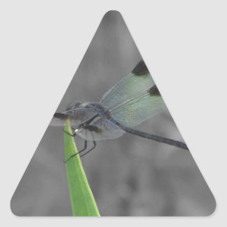 Dragonfly Resting on a Blade of Grass Triangle Sticker
