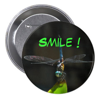 Dragonfly Smile Button