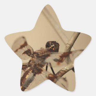 Dragonfly Star Sticker