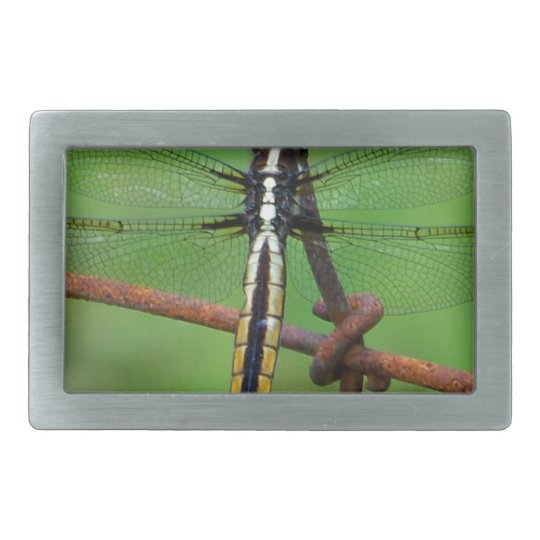 DRAGONFLY STOPS BY THE GARDEN RECTANGULAR BELT BUCKLE