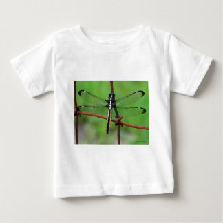 DRAGONFLY STOPS BY THE GARDEN T SHIRTS