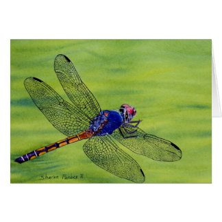 Dragonfly watercolor painting card