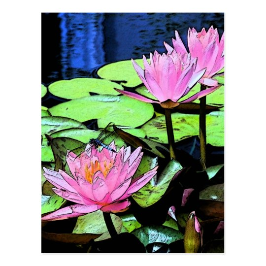 Dragonfly Waterlily sumi-e Postcard