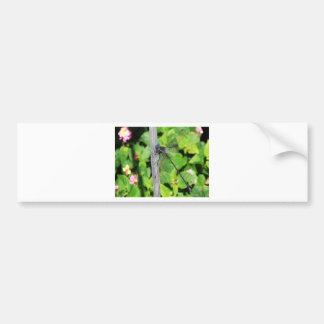 Dragonfly with blue eyes bumper sticker