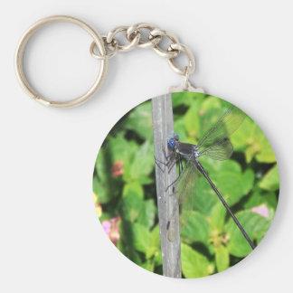 Dragonfly with blue eyes keychain