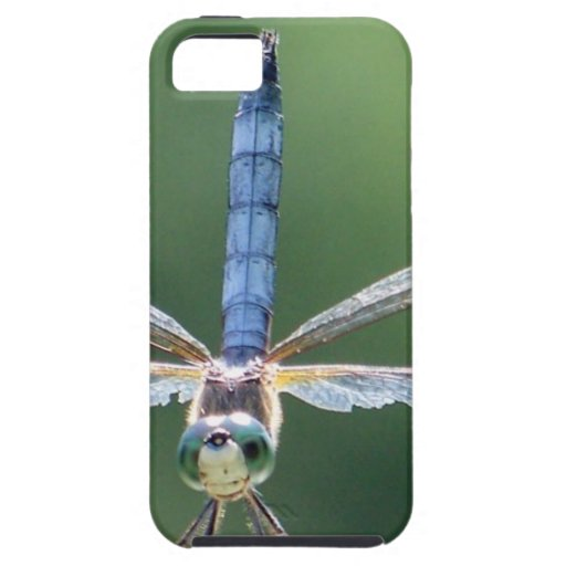 DRAGONFLY with damaged wings iPhone 5/5S Cover