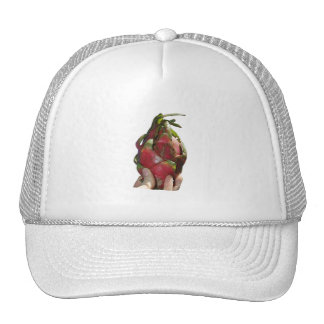 Dragonfruit held in fingers photo hats
