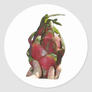 Dragonfruit held in fingers photo round stickers