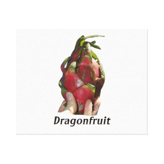 Dragonfruit held in fingers with text photo Pitaya Canvas Print