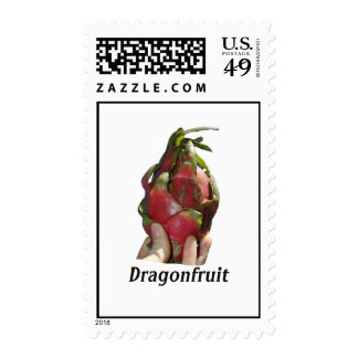 Dragonfruit held in fingers with text photo Pitaya Postage Stamp
