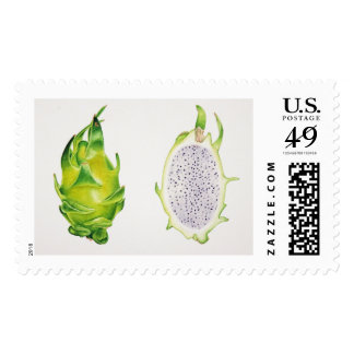 Dragonfruit Postage