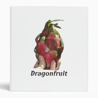 Dragonfruit se sostuvo en dedos con la foto Pitaya