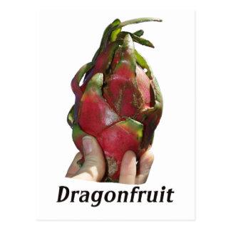 Dragonfruit se sostuvo en dedos con la foto Pitaya Postales