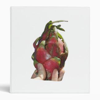 Dragonfruit se sostuvo en foto de los dedos