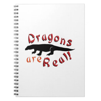 Dragons Are Real Spiral Notebook