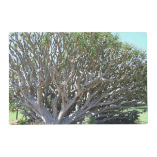 Dragon's Blood Tree Placemat