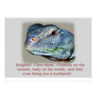 Dragons Love Knights Postcard