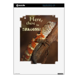 Dragons, Orange Lizard iPAD skin Skins For The iPad 2