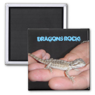 Dragons Rock Magnet