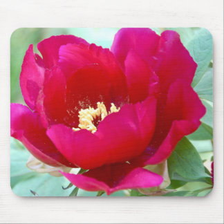 Dragons, TIgers and Peonies II Mousepad