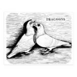 Dragoon White Pair Postcard