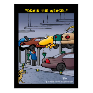 """Drain The Weasel"" Postcard"