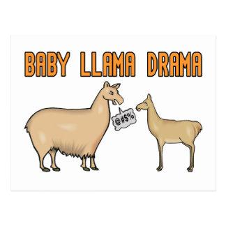 Drama de la llama del bebé tarjetas postales