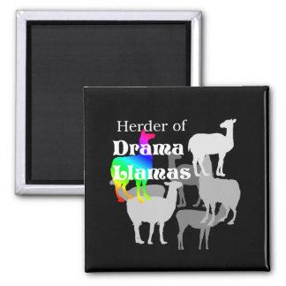 Drama Llama Herder 2 Inch Square Magnet