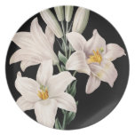 Dramatic Black and White Lilies Plates