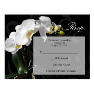 Dramatic Black and White Orchid RSVP Postcard