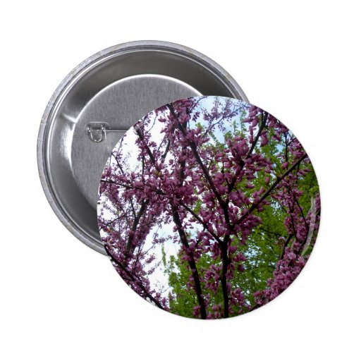 Dramatic Deep Pink Flowering Trees New York City Buttons