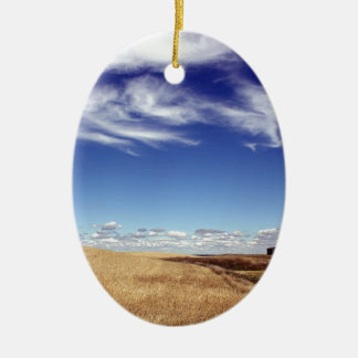 dramatic fields and sky ceramic ornament
