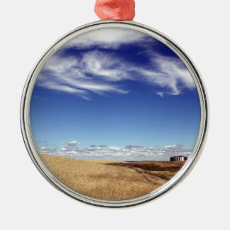 dramatic fields and sky metal ornament