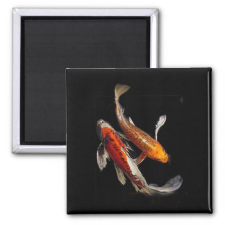 Dramatic Koi Pair 2 Inch Square Magnet