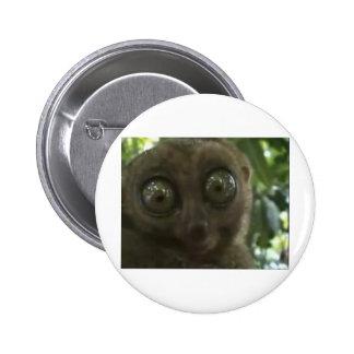 Dramatic Lemur Pinback Button