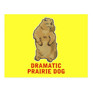 Dramatic Prairie Dog Postcard