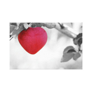 Dramatic Red Heart Shaped Apple Canvas Print