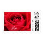 Dramatic Red Hybrid Tea Rose Wedding Anniversary Stamps