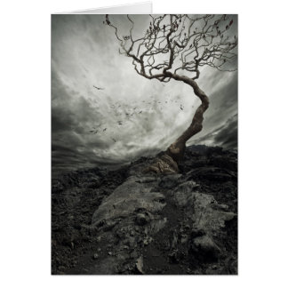 Dramatic sky over old lonely tree card