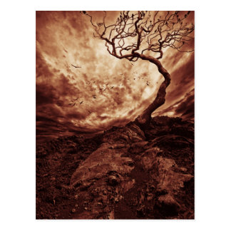 Dramatic Sky Over Old Lonely Tree Postcard