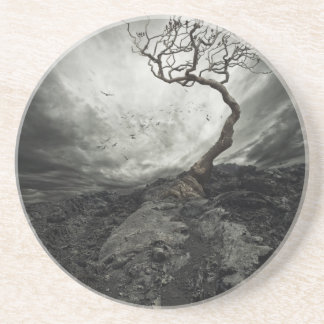 Dramatic sky over old lonely tree sandstone coaster