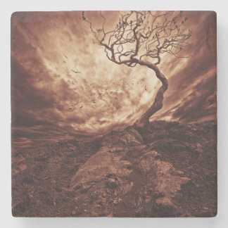 Dramatic Sky Over Old Lonely Tree Stone Coaster