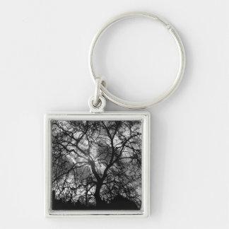 Dramatic Tree Silhouette Keychain