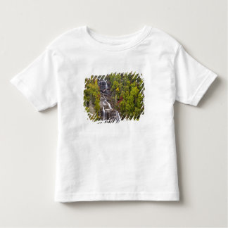Dramatic Whitewater Falls in autumn in the Toddler T-shirt